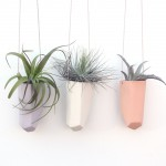 Plantes en pots suspendues