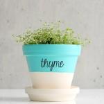 Stickers pour pots de fleurs