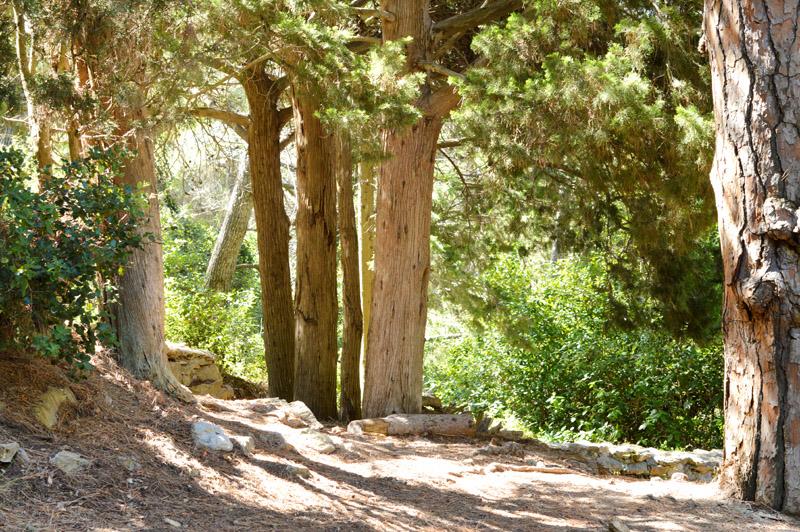 Gruissan : randonnée jusqu'à Notre Dame des Auzils