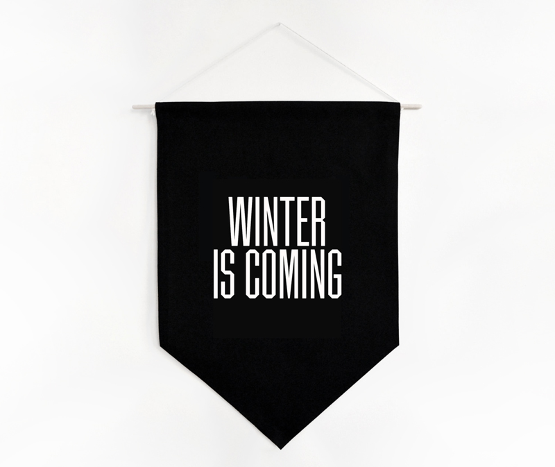 Bannière Winter is Coming by Summer Boyfriend