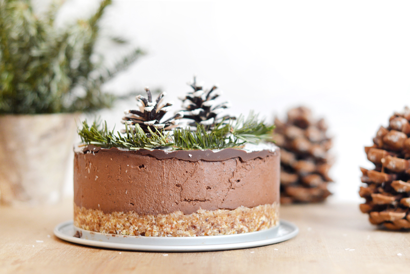 Layer cake chocolat noix de coco cru vegan sans gluten sweet sour healthy happy living - Gateau vegan sans gluten ...
