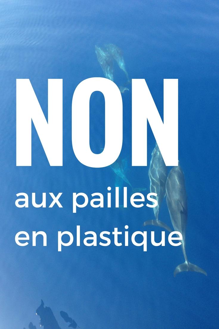On sait déjà que les bouteilles en plastique et les sacs en plastique sont mauvais pour l'environnement mais on parle peu des pailles. Pourtant elles font partie du top 10 des objets en plastique qui polluent le plus les plages et les océans. Et il y en a partout : au bar, au restau, à la cafétéria … On accepte cette paille de manière naturelle sans se poser de questions. Si on garde cette mauvaise habitude, d'ici 2050, il y aura plus de plastique dans l'océan que de poissons !