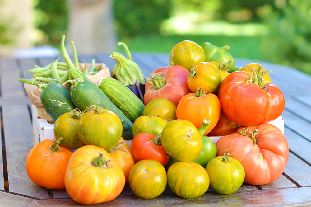 Anti-gaspi : 5 conseils pour sauver les fruits et légumes de la poubelle !