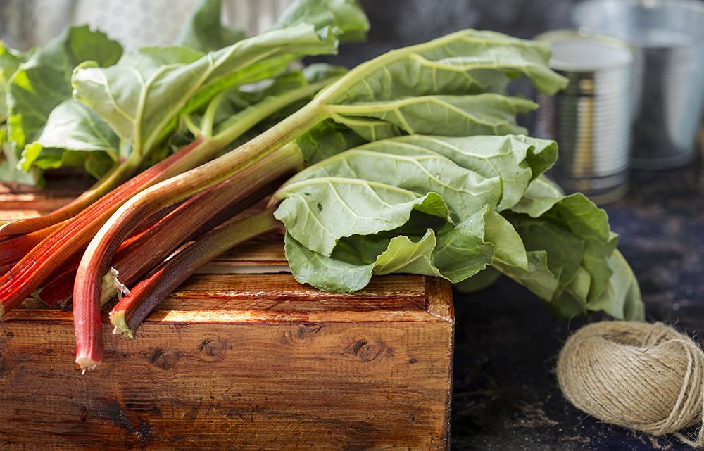 Fruits et légumes bio : comment sont-ils produits ?