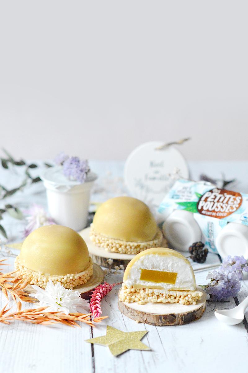 Pour les fêtes, je vous propose une recette de dôme coco-chocolat coeur fruits exotiquesà base de yaourt, avec le brassé de coco de la jolie marque française Les Petites Pousses : une chouette idée de dessert à l'assiette qui est facile à faire et qui donne un look raffiné. Parfait pour les fêtes, non ?