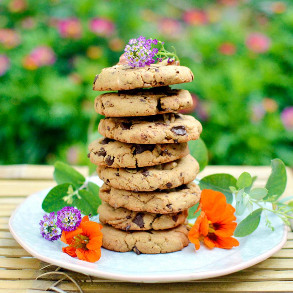 Guide pratique de pâtisserie sans gluten (et vegan) : cookies